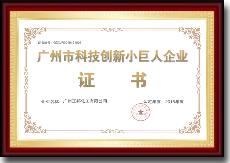 Certificate: Sci. & Tech. Innovation Little Giant